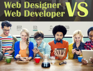 What is a website developer