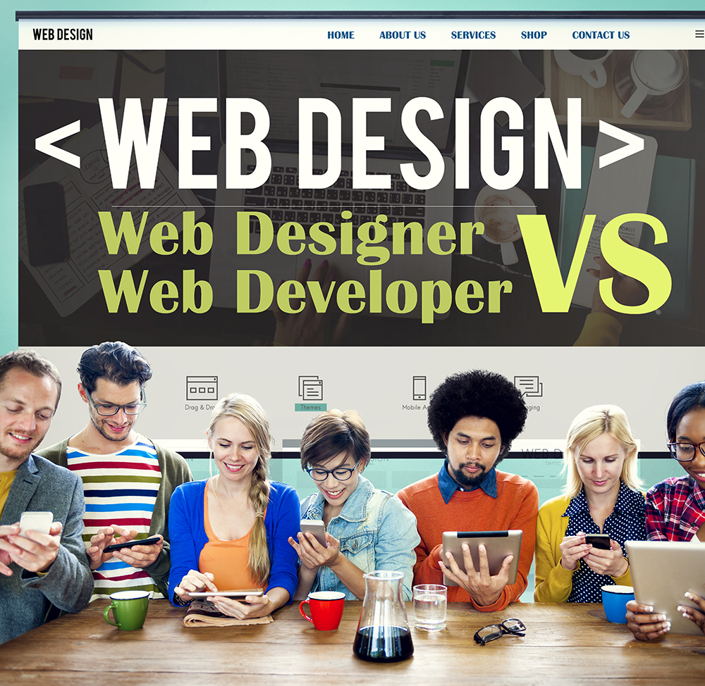 what is a website designer and what is a website developer